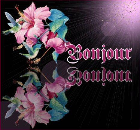 BONJOURS BONSOIRS DU MOIS D'OCTOBRE - Page 8 X8qh0qpo